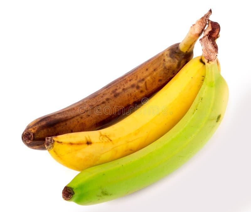 在白色背景隔绝的腐烂的黄色和绿色香蕉 免版税库存照片