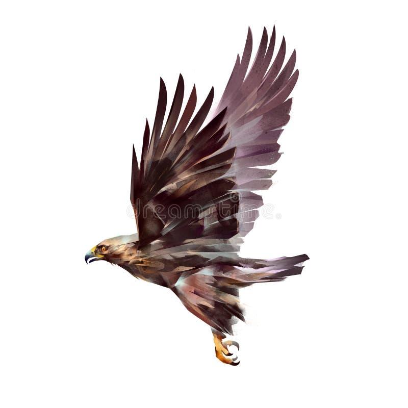 在白色背景隔绝的被绘的飞行的老鹰 库存例证