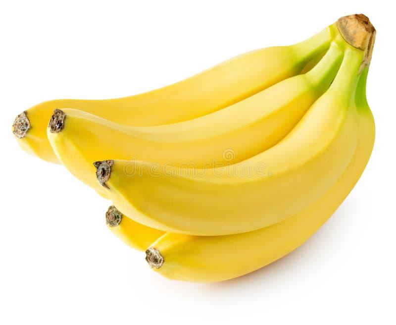 在白色背景隔绝的香蕉 库存图片