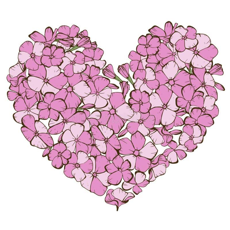 在白色背景隔绝的轻轻地桃红色福禄考花的心脏 也corel凹道例证向量 向量例证
