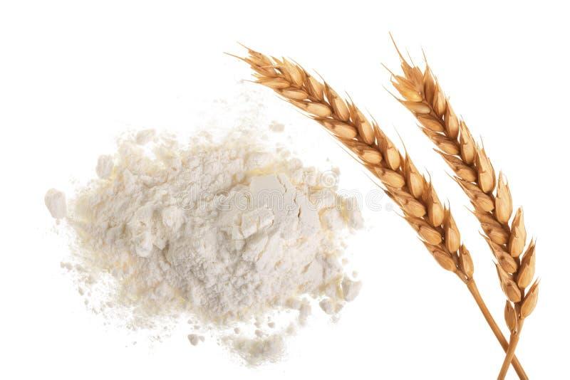 在白色背景面粉隔绝的麦子的耳朵和堆 顶视图 平的位置 免版税图库摄影