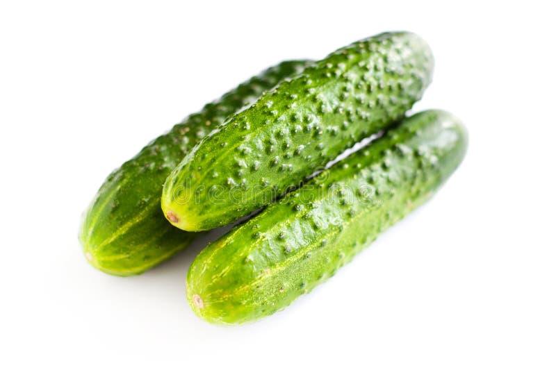 在白色背景,一束的3个新鲜的黄瓜从庭院孤立的美丽的绿色嫩黄瓜 免版税库存图片