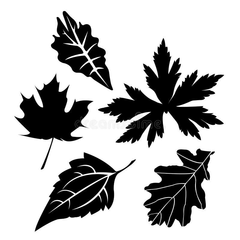 在白色背景,叶子,植物的叶子集合剪影传染媒介 皇族释放例证