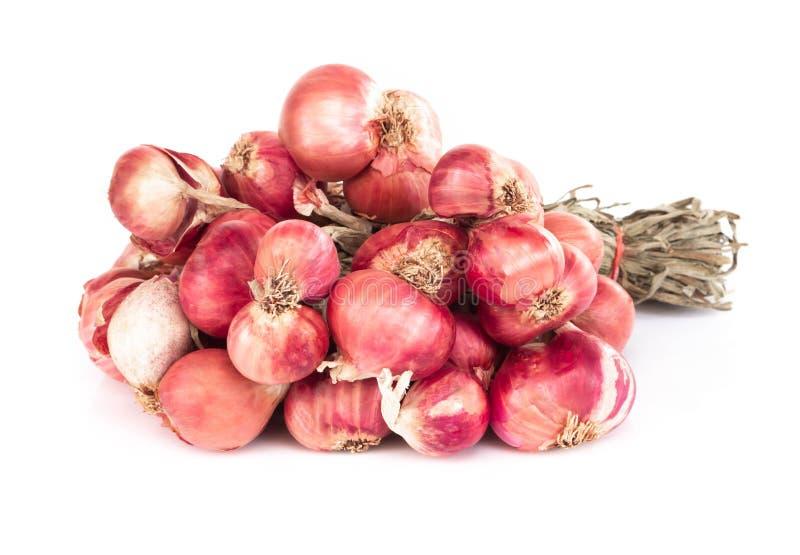 在白色背景,未加工的食品成分的红色干葱 库存图片