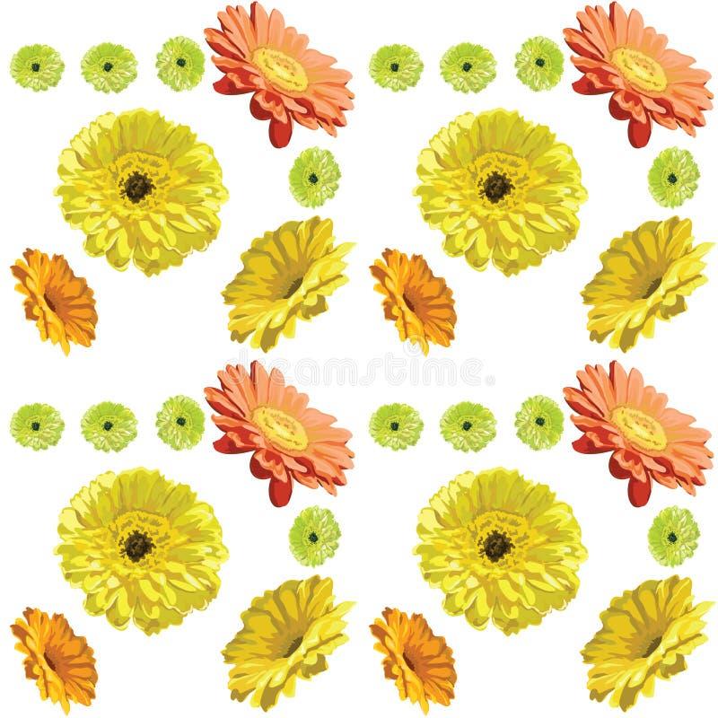 在白色背景,黄色的大丁草花无缝的样式或者 库存例证