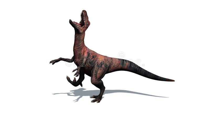 在白色背景-肉食鸟-隔绝的恐龙 皇族释放例证