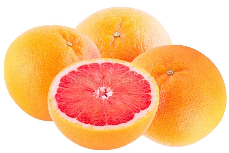 在白色背景wi和一半隔绝的三个整个葡萄柚 库存照片