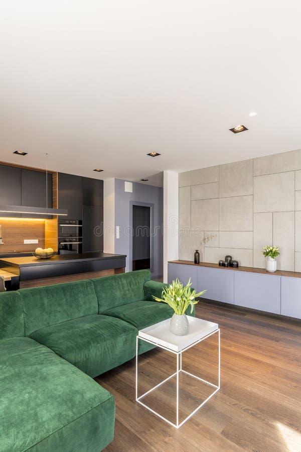 在白色茶几安置的花瓶的鲜花在现代客厅内部真正的照片与绿色沙发的 库存照片