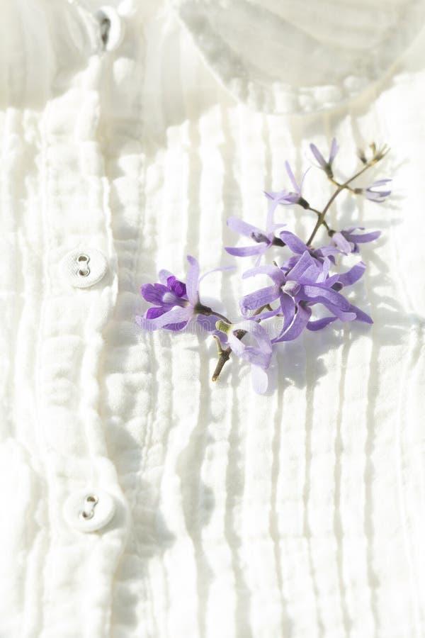在白色衬衣选择聚焦的紫色花与浅深度 免版税库存图片