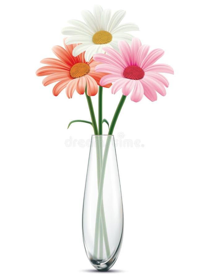 在白色被隔绝的一个玻璃花瓶的雏菊 库存例证