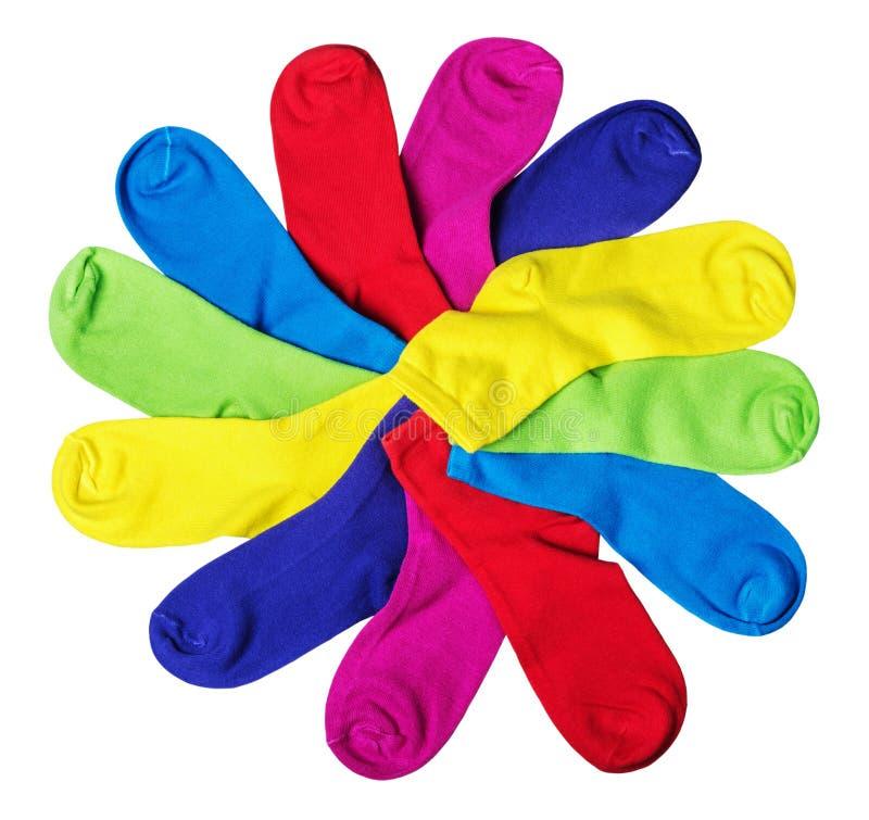 在白色隔绝的不同的颜色袜子 库存图片