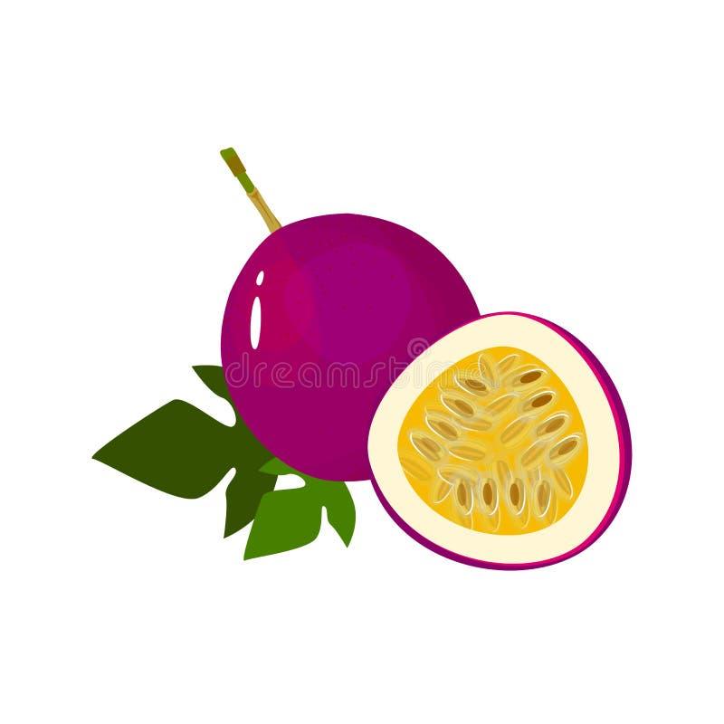 在白色隔绝的动画片新鲜的passionfruit果子 皇族释放例证
