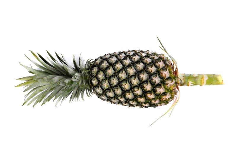 在白色隔绝的唯一成熟整个菠萝 免版税库存图片