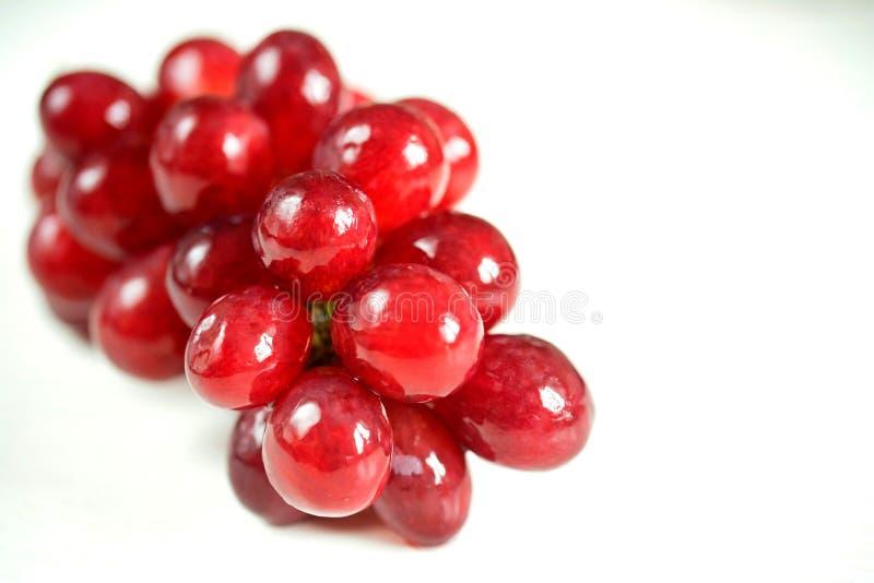 在白色隔绝的束成熟红葡萄 免版税库存照片