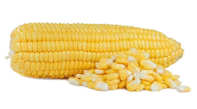 在白色隔绝的玉米被删去 免版税库存照片