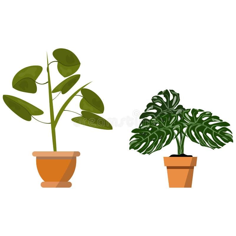 在白色隔绝的盆的植物 传染媒介套两罐例证的绿色热带植物 向量例证