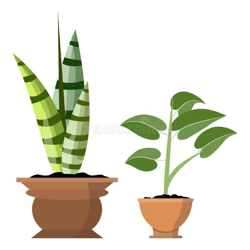在白色隔绝的盆的植物 传染媒介套两罐例证的绿色热带植物 皇族释放例证