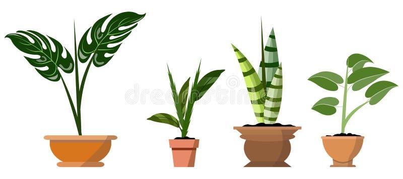 在白色隔绝的盆的植物 传染媒介套罐例证的四个绿色热带植物 向量例证