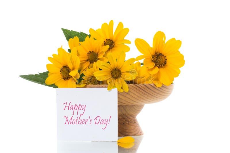 在白色隔绝的美丽的开花的黄色雏菊花束  免版税库存图片