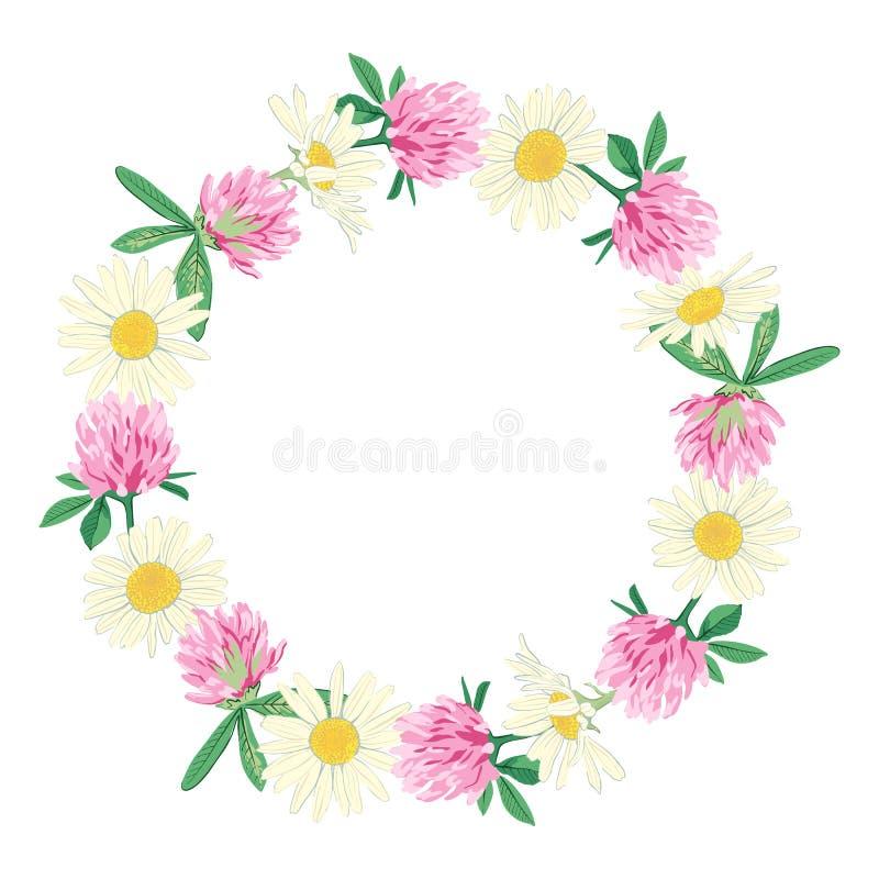在白色隔绝的花卉花圈 皇族释放例证