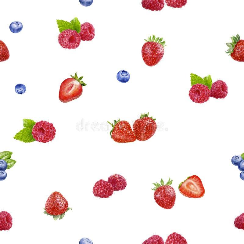 在白色隔绝的莓果无缝的样式水彩例证 免版税库存照片