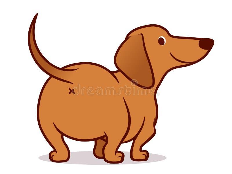 在白色隔绝的逗人喜爱的熏肉香肠香肠狗动画片例证 友好的棕褐色的达克斯猎犬小狗,背面图简单的图画  库存例证