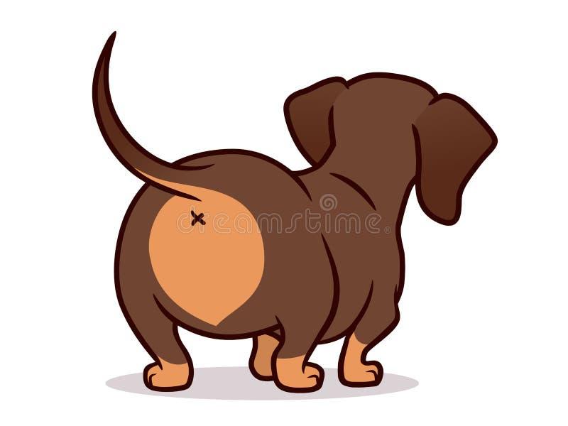 在白色隔绝的逗人喜爱的达克斯猎犬狗动画片例证 巧克力和棕褐色的熏肉香肠香肠小狗,后方简单的图画  库存例证