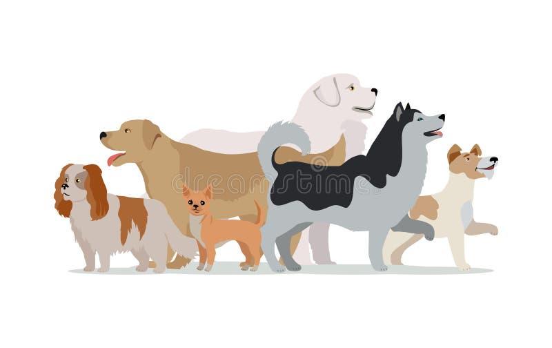 在白色隔绝的不同的狗的汇集 库存例证