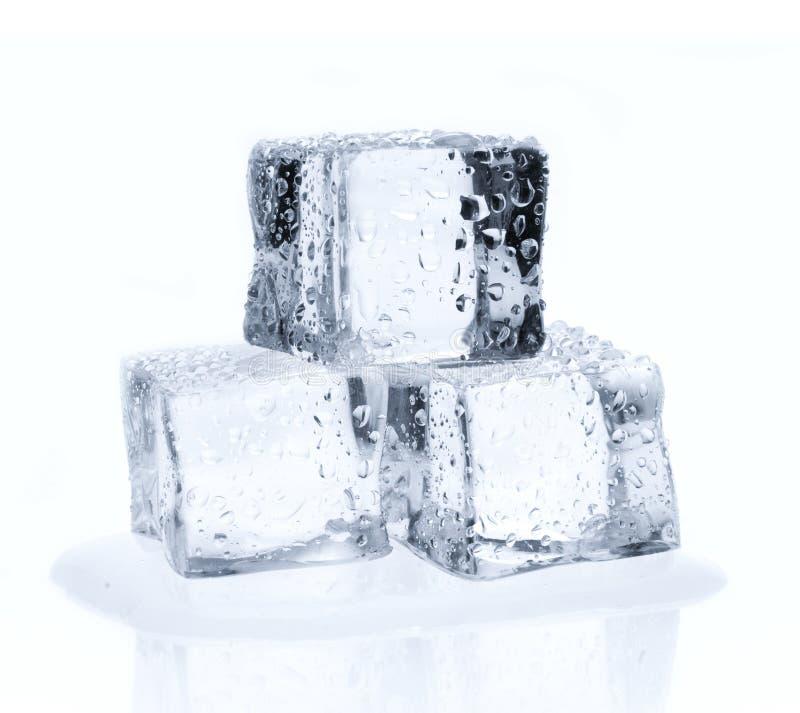 在白色隔绝的冰块 免版税库存照片