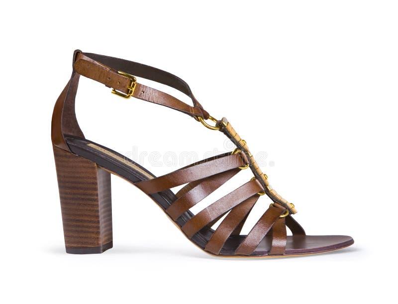 在白色隔绝的布朗皮革女性鞋子 库存图片
