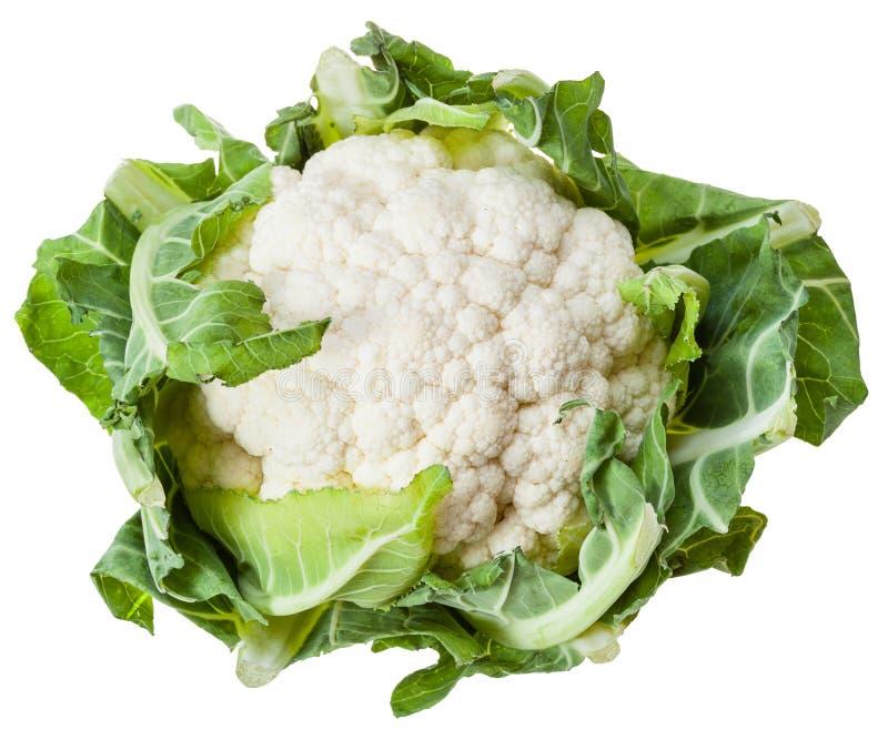 在白色隔绝的成熟花椰菜头 库存照片