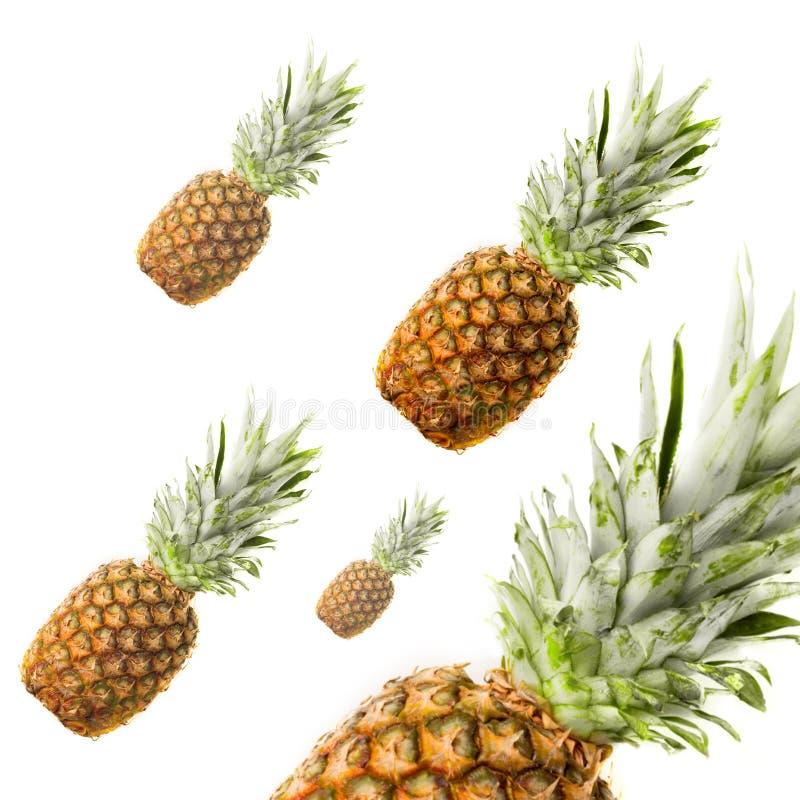 在白色隔绝的成熟菠萝 库存图片