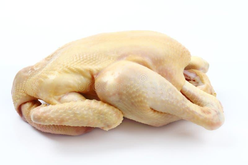 在白色隔绝的新鲜的未加工的鸡 免版税库存图片