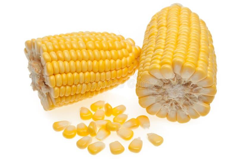 在白色隔绝的玉米五谷 免版税库存照片