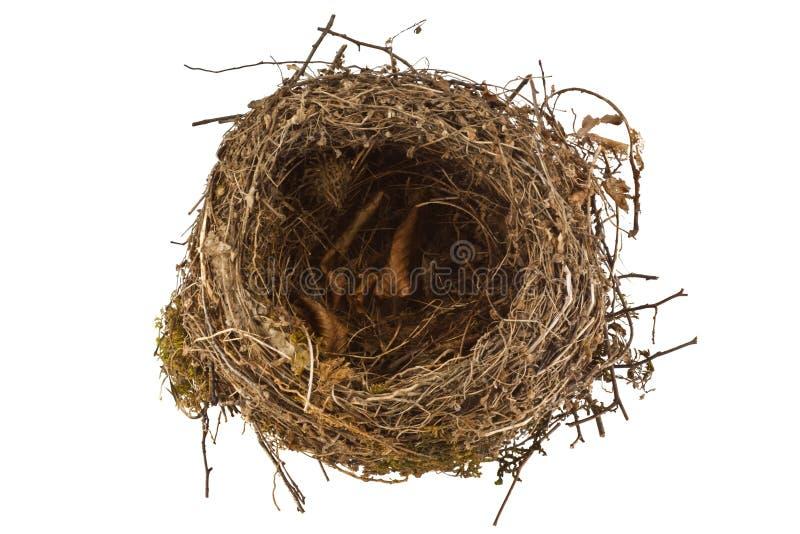 在白色隔绝的空的鸟巢 免版税库存图片