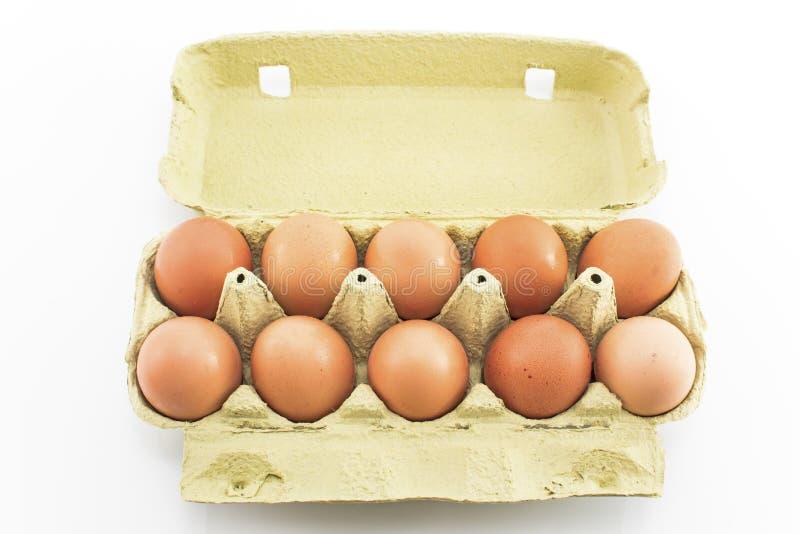 在白色隔绝的纸盒的十个鸡蛋 库存图片