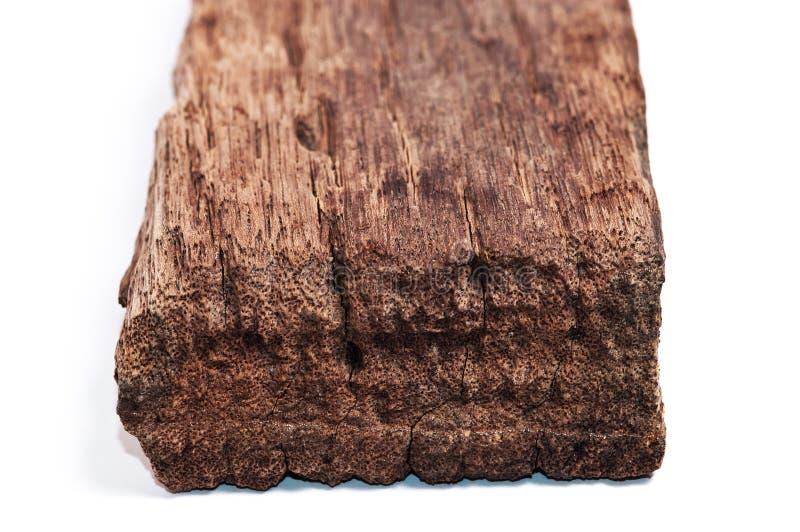 在白色隔绝的老木头片断 库存照片