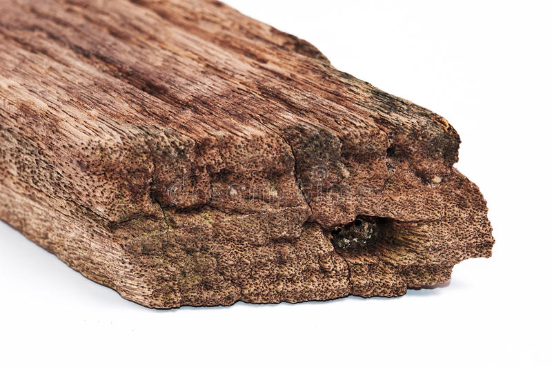 在白色隔绝的老木头片断 图库摄影