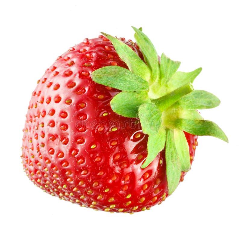 在白色隔绝的草莓 图库摄影