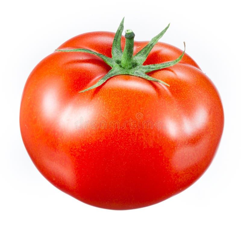 在白色隔绝的蕃茄 库存照片