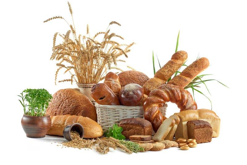 在白色隔绝的被分类的面包 库存图片