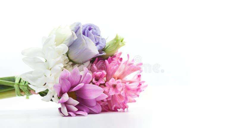 在白色隔绝的鲜花花束  库存图片