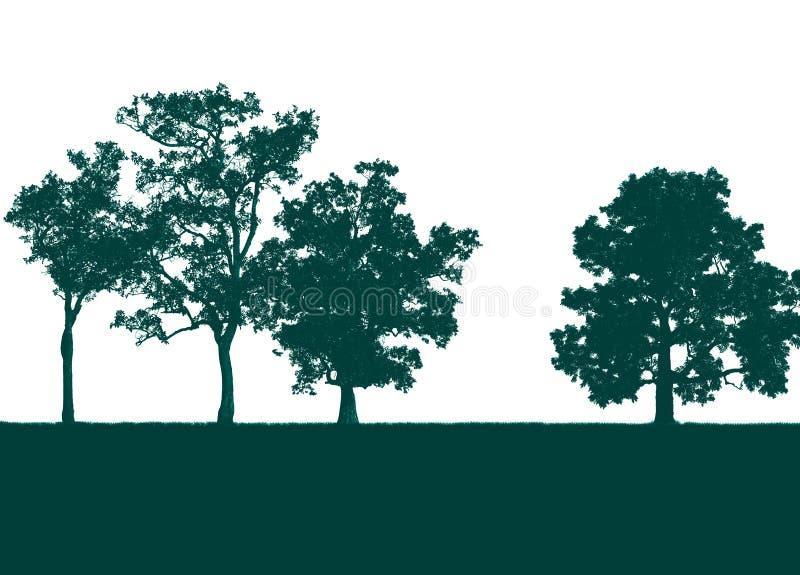 在白色隔绝的绿色树 免版税库存图片