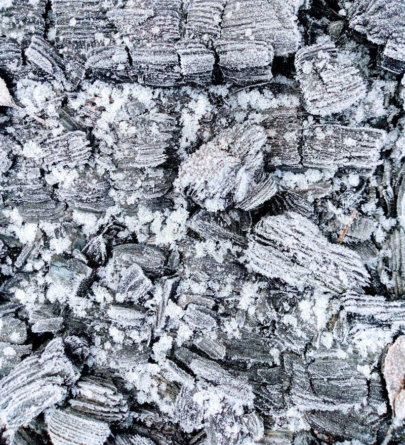 在白色雪的灰色煤炭 图库摄影