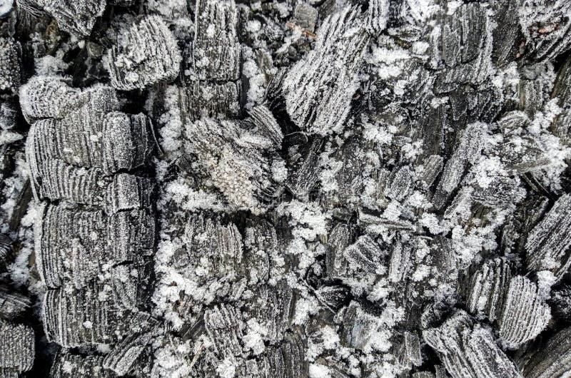 在白色雪的灰色煤炭 库存图片