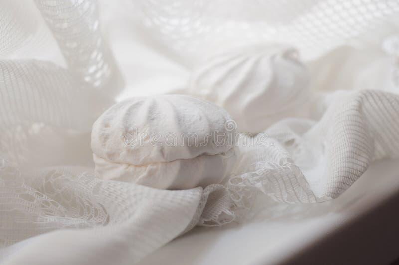 在白色鞋带织品的两个蛋白软糖 免版税图库摄影