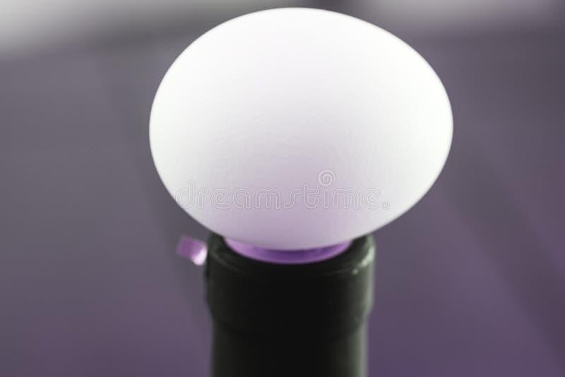 在白色颜色和宏指令接近的视图的惊人的蛋图片 免版税库存照片