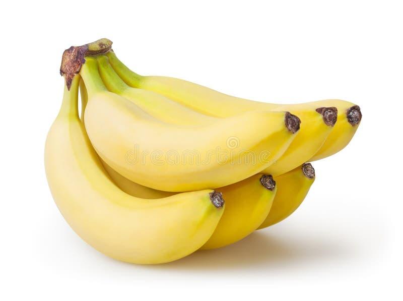 在白色香蕉隔绝的束 免版税库存图片