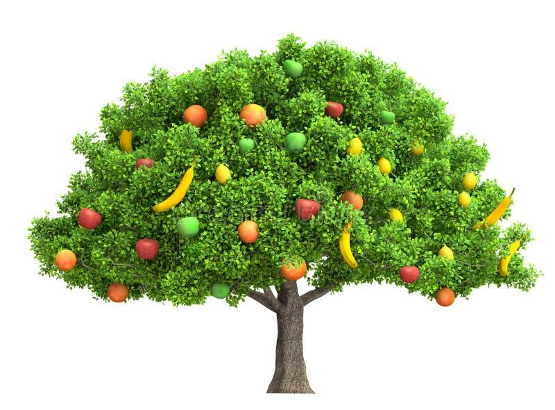 在白色3D例证隔绝的果树 皇族释放例证