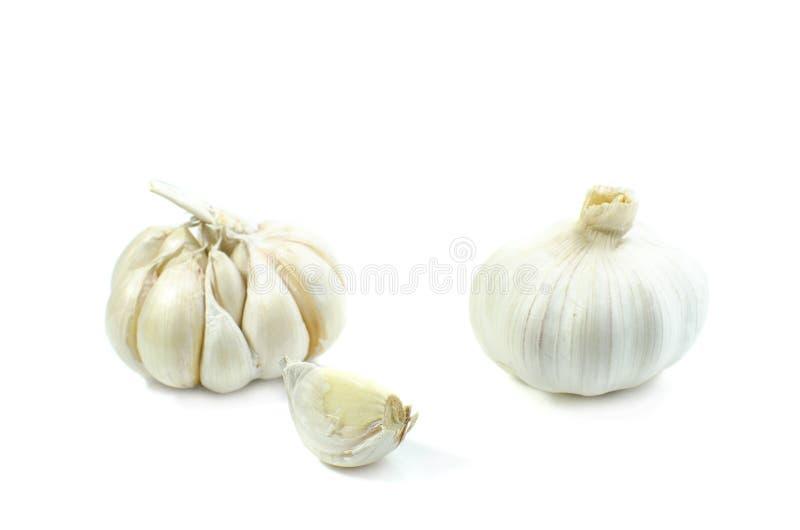 在白色backgrtound的大蒜孤立 免版税库存图片